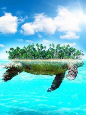 Toàn Dân Hải Đảo: Ta Ở Cự Quy Trên Lưng Xây Gia Viên